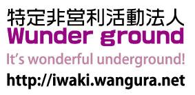 Wunder ground