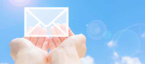 ご支援へのお礼MAILまたは手紙をお送りさせていただきます。