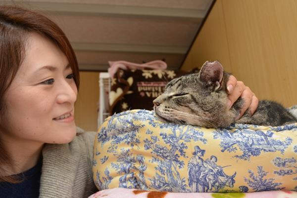 朝日新聞運営のWebサイト sippo(シッポ)に記事が掲載されました!